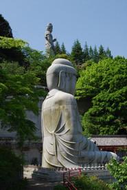 Tsubosakadera_07