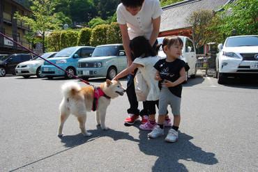 Tsubosakadera_08