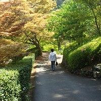 Yoshiminedera_09_1